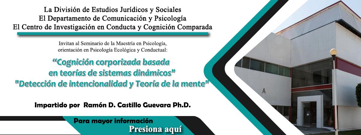 Invitación al Seminario de la Maestría en Psicología
