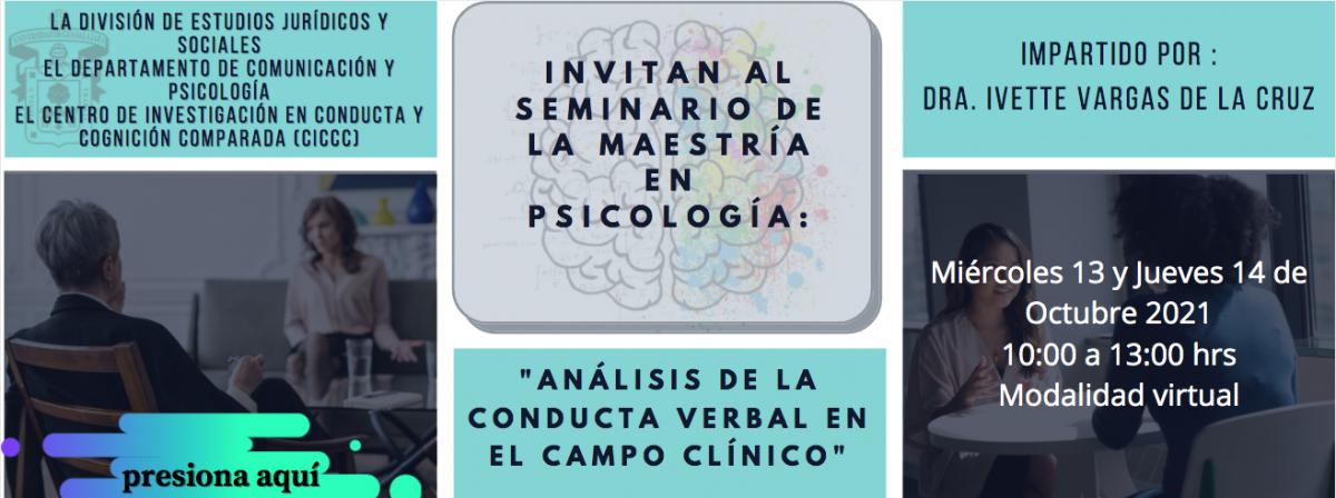 Seminario de la Maestría en Psicología
